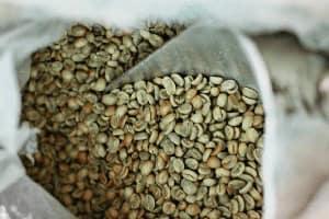 Зеленые кофейные зёрна